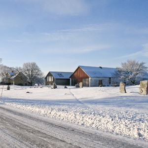 Bild på Vinter utanför Nygård